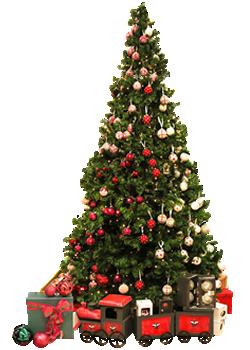 jõulupeo korraldamine